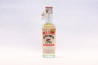 Leggi tutto: Maraschino / Distilleria: Pallini